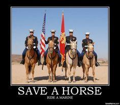 #usmc LOL Palomino, Once A Marine, Marine Mom, Horsemen Of The Apocalypse, Us Marines, Women Marines, Military Love, Military Photos, Us Marine Corps