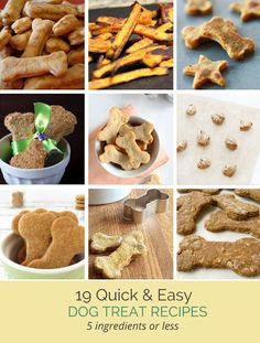 21 Quick & Simple Dog Treat Recipes With 5 Ingredients or Less