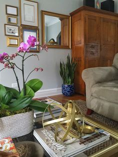 my double #orchid plant with my #motherinlawstongue floor plant finished off my #livingroom