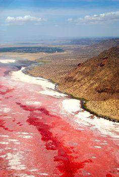 Red Lake Natron in Tanzania