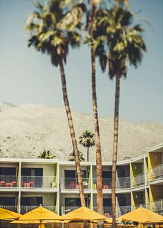 palm springs. It is that hip and pretty there!