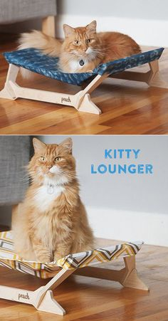 Cozy for your cat, attractive for your décor. Made from lightweight, sustainable birch plywood and U.S.-grown, machine-washable cotton.