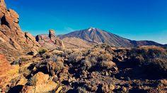 EN IMAGES - Elle flotte en plein Atlantique, à hauteur du Maroc, mais c'est l'Espagne qui gouverne Tenerife, comme tout l'archipel des Canaries. Cette position géographique lui vaut une météo à la douceur exemplaire, même en plein hiver. La belle y ajoute mille séductions nature. Des randonnées d'altitude, des chemins de forêt, des promenades spectaculaires et même des plages 100% charme avec une hôtellerie pour tous les budgets. Idéal pour oublier l'hiver.