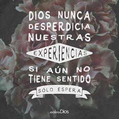 #Dios nunca desperdicia nuestras #experiencias. Si aún no tiene sentido, sólo espera. #CuestiónDeTiempo #Tiempo #ExploraDios
