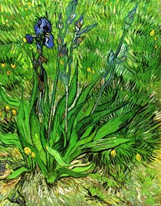 The Iris / Vincent van Gogh - 1889 I wish I could go back in time and tell him the world would understand his art one day and love him