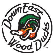 Down East Wood Ducks.PNG