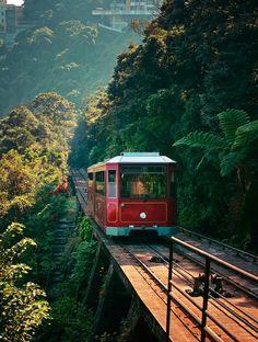 Peak tram, Hong Kong, by Emma Fok (Source: furples, via manoelwilliam)