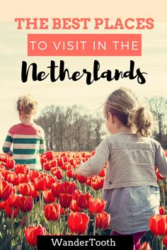 Tulips, Amsterdam and much more. The best places to visit in the Netherlands | Netherlands Travel Tips