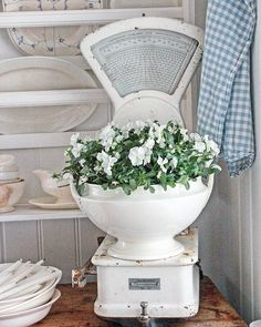 Superb shabby chic decor, really super witty inspiration to design, visit this chic post number 5383478058 immediately. Cocina Shabby Chic, Shabby Chic Kitchen, Country Kitchen, Vintage Kitchen, French Kitchen, Kitchen Decor, Cottage Living, Cottage Style, Farmhouse Style