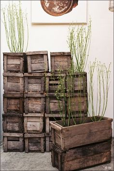 Old wood crates Pallet Crates, Old Crates, Wooden Crates, Pallet Boxes, Wine Crates, Garden Design, House Design, Diy Holz, Old Wood