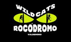Wild Cats Rocódromo, tu Sala de Escalada en el sur de la Comunidad de Madrid, Valdemoro. Matricula gratis. Pueba nuestro bautismo de escalada para 2 ó 4 personas por sólo 30€ por pareja http://www.envaldemoro.com/wild-cats-rocodromo/