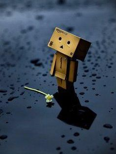 Sad Box Deep Sadness Danbo Love Amazon Lovely Things