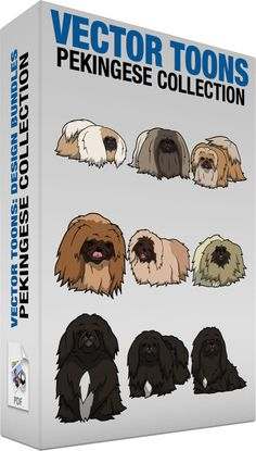 Pekingese Collection :  Bundle of images includes the following:  A Pekingese dog A dog with thick long and fluffy white and beige coat dark gray face looking short and heavy  A bored Pekingese dog A dog with thick long and fluffy beige and chocolate brown coat dark brown face looks ahead in a bored way  A curious Pekingese dog A dog with thick long and fluffy beige and golden brown coat brown muzzle looks ahead  A hungry Pekingese dog A dog with thick long and fluffy brown coat dark brown…