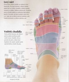Acupressure More Effective Than Physical Therapy - Acupuncture Hut At Home Workout Plan, At Home Workouts, Foot Reflexology, Palmistry, Healthy Lifestyle Tips, Physical Therapy, Acupuncture, Perfect Body, Reiki
