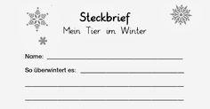 kostenloses Arbeitsblatt für den Sachunterricht in der Grundschule ...