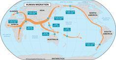 Human Migration map