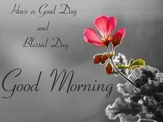 472 best Good Morning Gif photos by sonusunariya Morning Quotes Images, Good Day Quotes, Morning Greetings Quotes, Morning Messages, Good Morning Quotes, Good Morning Cards, Morning Msg, Good Morning My Love, Morning Prayers