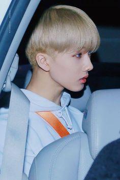 jisung looking angelic af, my beautiiful child nct Taeyong, Nct 127, Winwin, K Pop, Park Ji-sung, Ntc Dream, Nct Dream Members, Park Jisung Nct, Sm Rookies