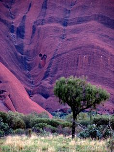 Uluru southeast at first light