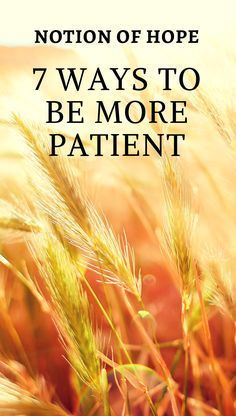 7 ways to be more patient when you are STRESSED and can't think straight. Simply techniques and tips on how to be more patient when you have to just wait! New Quotes, Bible Quotes, Bible Verses, Funny Quotes, Christian Love, Christian Quotes, Christian Living, How To Pray Effectively, Slow To Speak