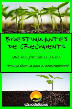 Los bioestimulantes agrícolas son sustancias y/o microorganismos activos cuyos componentes y aplicación sobre plantas ó a la rizósfera van a promover el enraizamiento, crecimiento y maduración de plantas y árboles. Herbs, Environment, Happy, Microorganisms, Plants, Herb, Spice