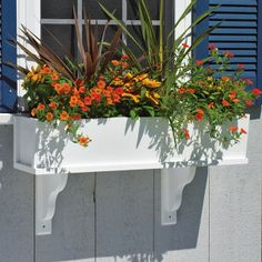 window boxes | Window Boxes