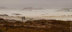 Прогулка вдоль океана