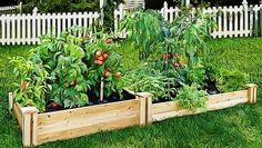How To Plan A Garden Layout For Beginners