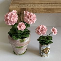 Dollhouse miniature scale artist made pink geraniums. Plant is in a white washed, mossy pot. Seedling is in a vintage look can. Tiny Flowers, Types Of Flowers, Flower Pots, Dollhouse Landscaping, Pink Geranium, Mini Craft, Mini Plants, Polymer Clay Flowers, Paper Flowers Diy