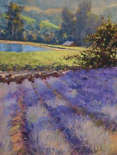 "Lavender Fields 12 x 9"" pastel landscape painting by Clark Mitchell  pastel paintings, original art, art for sale, landscape paintings, California paintings, plein air, plein air paintings, lavender fields, canvas artwork for sale, original fine art for sale, original oil paintings for sale, framed wall art, painted landscape, great landscape artists, scenery paintings, beautiful landscape paintings,"