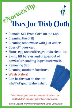 This loosely-woven, netted Dish Cloth can be used anywhere scrubbing action is needed. It's a consultant favorite for a reason! #norwex #norwextip