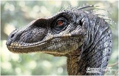 Jurassic Park Film, Jurassic Park World, Jurrassic Park, Park Art, Dinosaur Drawing, Dinosaur Art, Dragons, Dinosaur Illustration, Michael Crichton