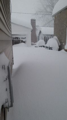 These Are the Pictures From Last Night's Snowstorm in Buffalo, NY And They're INSANE 6 - https://www.facebook.com/diplyofficial