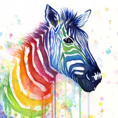Zebra Rainbow Watercolor Whimsical Animal Art Print by olechka - Art ideas Colorful Animal Paintings, Colorful Animals, Colorful Fruit, Rainbow Zebra, Rainbow Art, Watercolor Animals, Watercolor Art, Pop Art, Zebra Art
