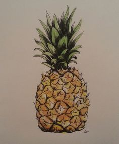 Most popular tags for this image include: fruit, graphic, pineapple, drawing and…