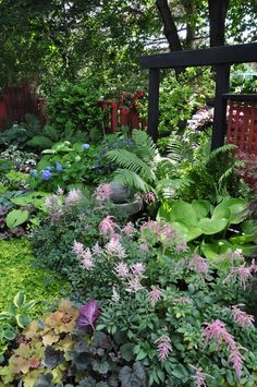 A Garden in the Shade~ Beautiful ferns and foliage with nicely bordered garden.