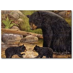 Bear Creek Gang Painting Print on Wood