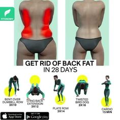 Fitness Workouts, Gym Workout Videos, Gym Workout For Beginners, Fitness Workout For Women, Easy Workouts, Back Workouts For Women, Back Workout Routine, Full Body Gym Workout, Back Fat Workout