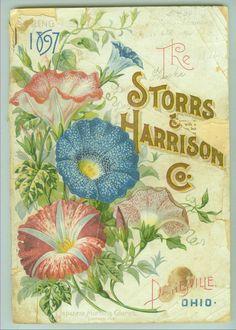 STORRS & HARRISON CO SEED CATALOG  1897 PAINESVILLE,OHIO