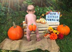 Baby Pumpkin Pictures, Halloween Baby Pictures, Halloween Bebes, Baby First Halloween, Baby In Pumpkin, Halloween Costumes, Costumes Kids, Family Costumes, Family Halloween