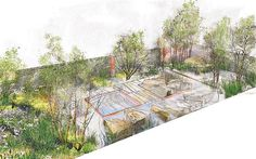 The Daily Telegraph garden by Sarah Price. Chelsea 2012