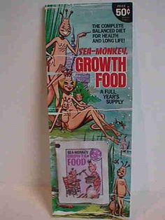 Sea Monkeys: I use to buy these all the time! I would see little things swimming but they'd eventually die after a few days. I was expecting to see real swimming monkeys...It was a gimmick! LOL.