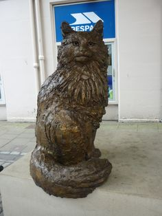 """""""Hamish McHamish"""" was a cat who wandered around the shops in St. Andrews visiting the staff before going home to his owner.  He was so well known that money was raised to create this statue of him. There has also been a book written about him."""