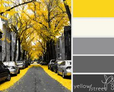 Sunshine yellow, white, gray, charcoal and black. Perfect colors for a kitchen