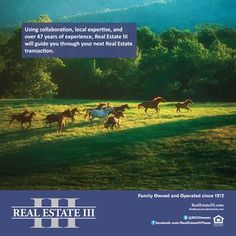 Charlottesville Real Estate The Real Estate III Weekly December 2018 Real Estate Classes, Us Real Estate, Real Estate Sales, Lake Monticello, University Of Virginia, Blue Ridge Mountains, Charlottesville, Mountain View, Acre