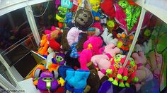 Staley pranks fans in claw machine   Gif Finder – Find and Share funny animated…
