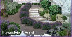 Progetti giardini privati, progetti balconi e terrazzi. Foto di aiuole e piccoli giardini. Idee per giardino e progettazione giardini on lin...