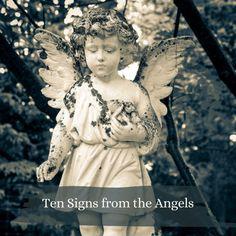 #reiki #reikirays #energy #vibrations #freshvibes #goodvibes #healing #reikihealing #angels #divine Reiki, Angel, Board, Angels, Sign