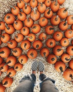 "vansgirls: "" That fall feeling 🍂 Photo: Julie Denby "" Fall Pictures, Fall Photos, October Pictures, Thanksgiving Wallpaper, Vanz, Autumn Aesthetic, Autumn Cozy, Happy Fall Y'all, Hello Autumn"
