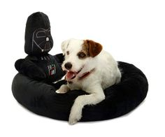 STAR WARS Darth Vader Pet Bed...... Can we for the boys??? they can have matching ones ;)